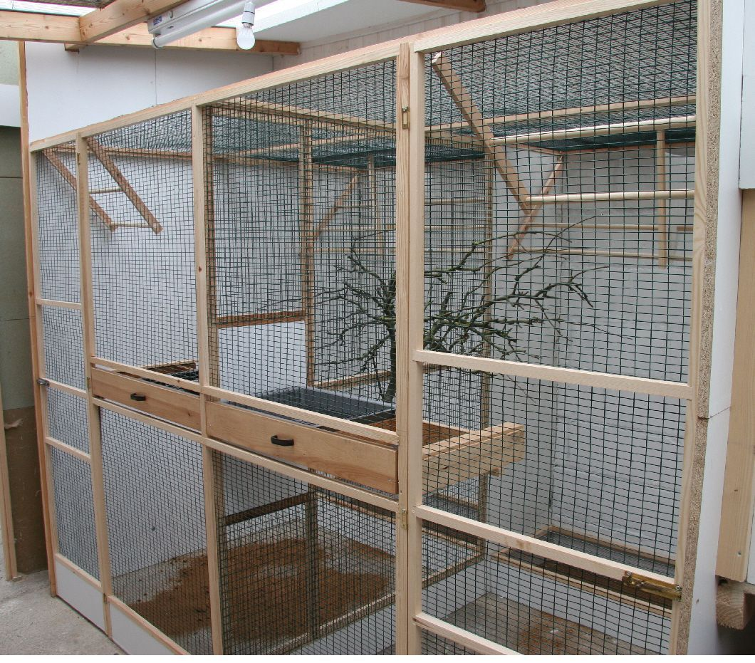 indoor bird aviary designs Bird aviary, Big bird cage