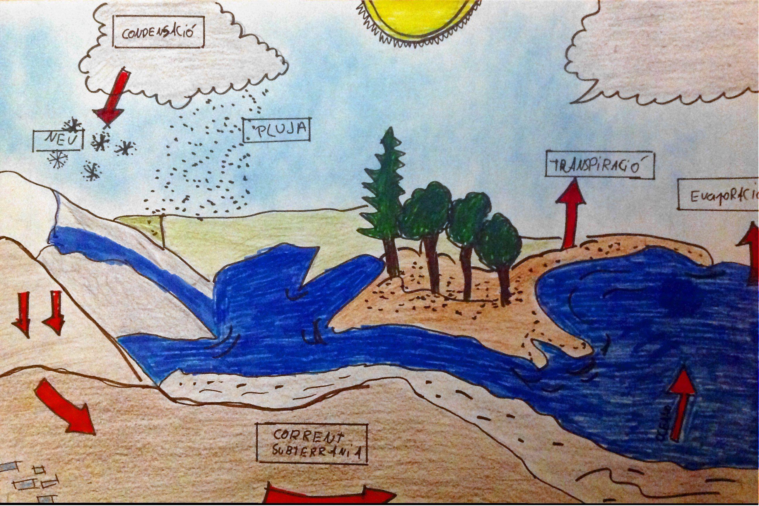Natzaret Esplugues Hemos Realizado Este Dibujo Descriptivo Del Ciclo Del Agua Las Fechas Describen Bien Todo El Proceso Painting Art Scio