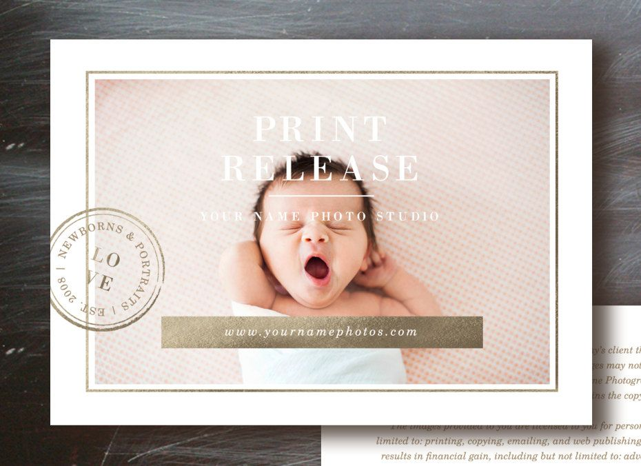 Photo Licensing Agreement Form - Lily Template