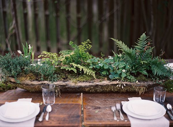 Fern Table Decorations   Google Search