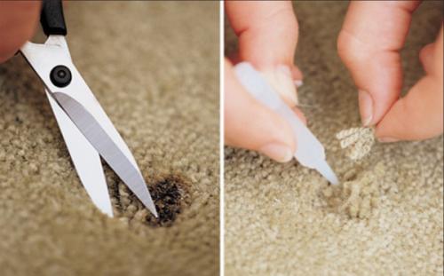 Repairing Small Carpet Burns Carpet Repair Burn Mark How To Clean Carpet