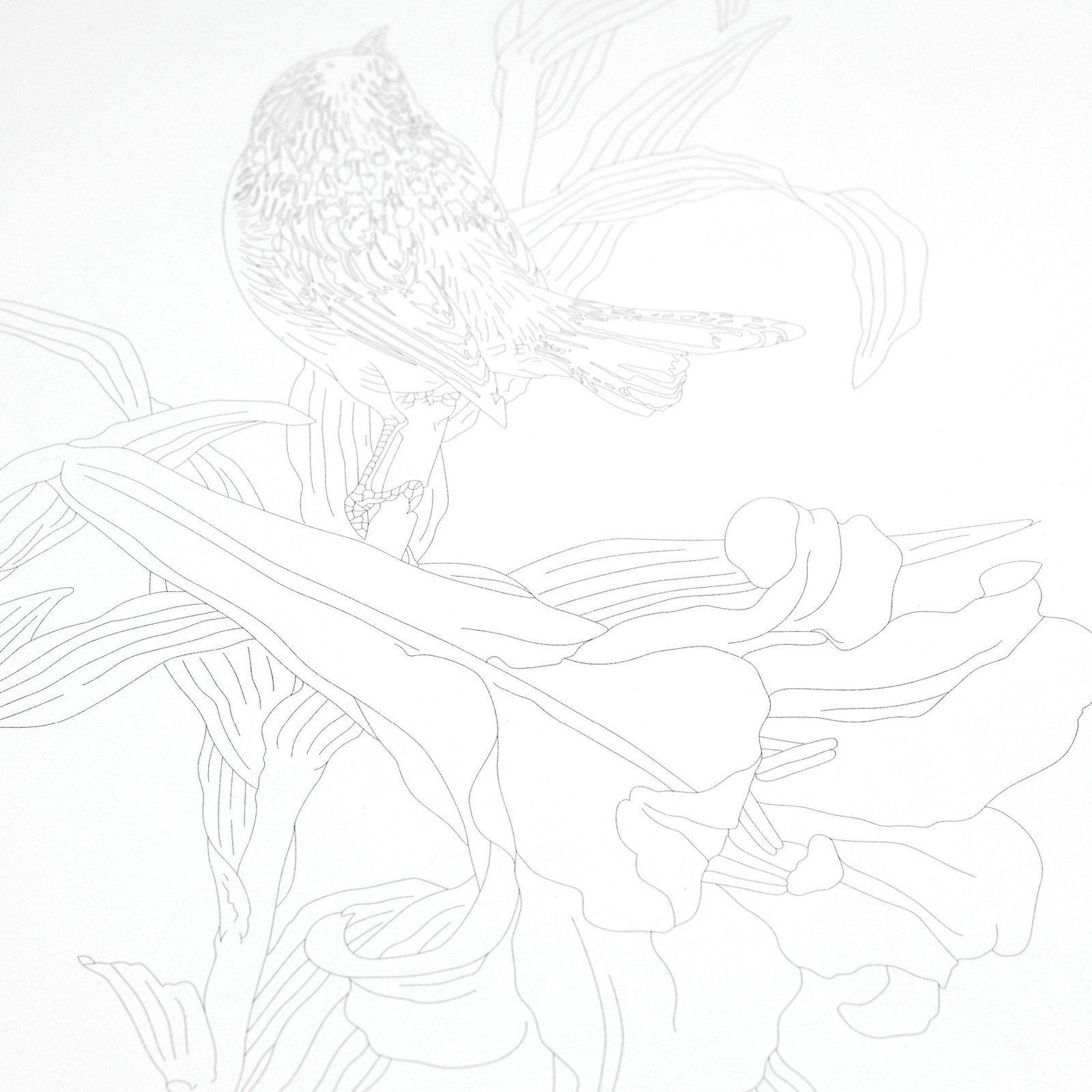 Japanese Designs: Pepin Van Roojen: 9789460098055: Books