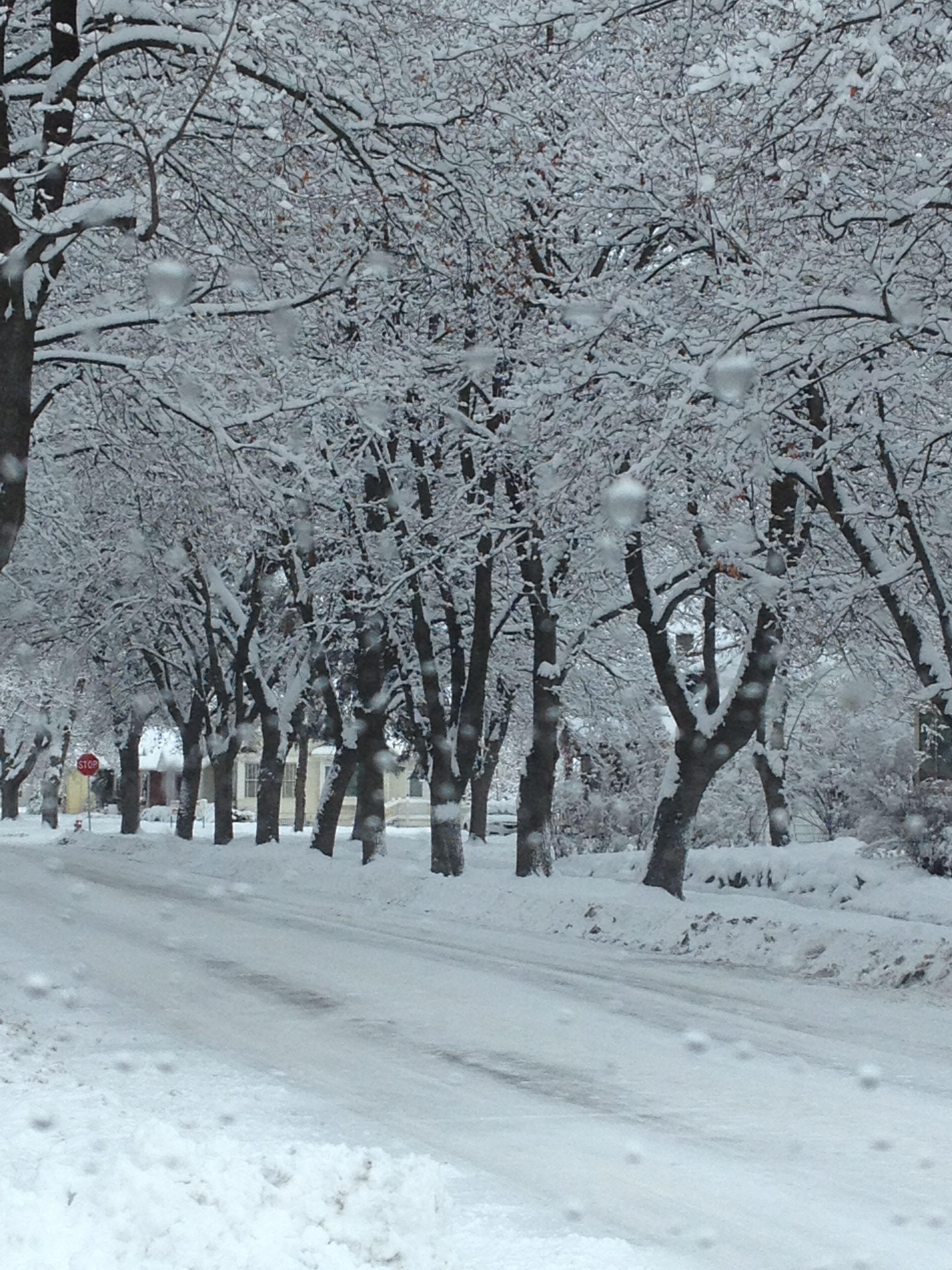 Winter wonderland | Kalispell, Quaint, Outdoor