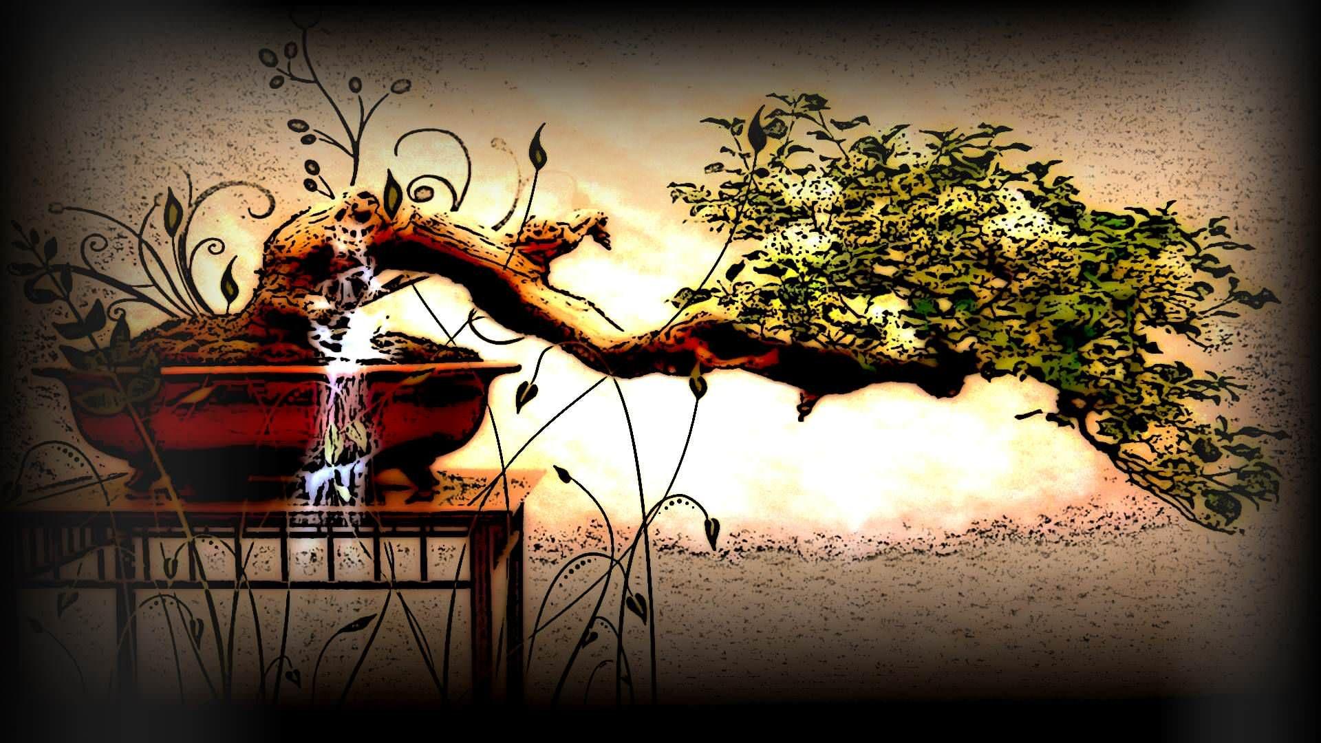 Wallpaper Bonsai Tree Wallpapers Desktop Hd 19201080 Bonsai Art Bonsai Art Wallpaper