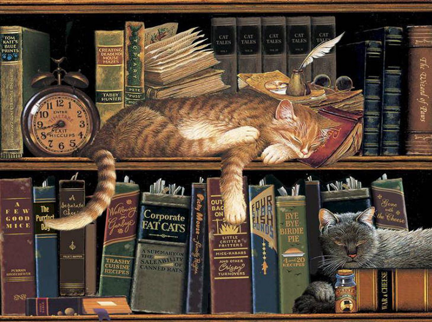 Кот в библиотеке картинки