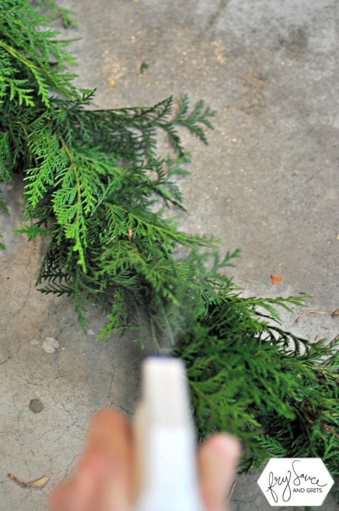 How To Prevent Holiday Fresh Greenery From Drying Out Fresh Greens Christmas Holiday Greenery Diy Christmas Garland