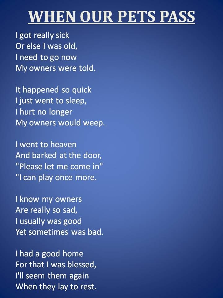 When Our Pets Pass Written by Kelly Kiser ©