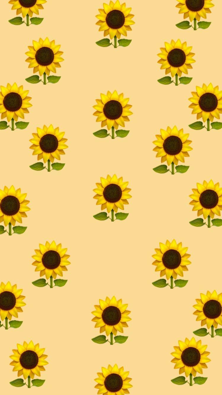 But ium sunflower a little funny diy pinterest wallpaper