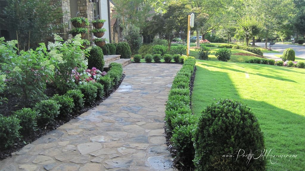 Boxwoods line the sidewalk to the door g a r d e n front for Backyard patio landscaping ideas