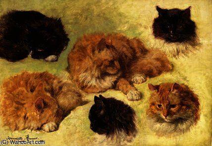 Études de chats de Henriette Ronner Knip (1821-1909, Netherlands)