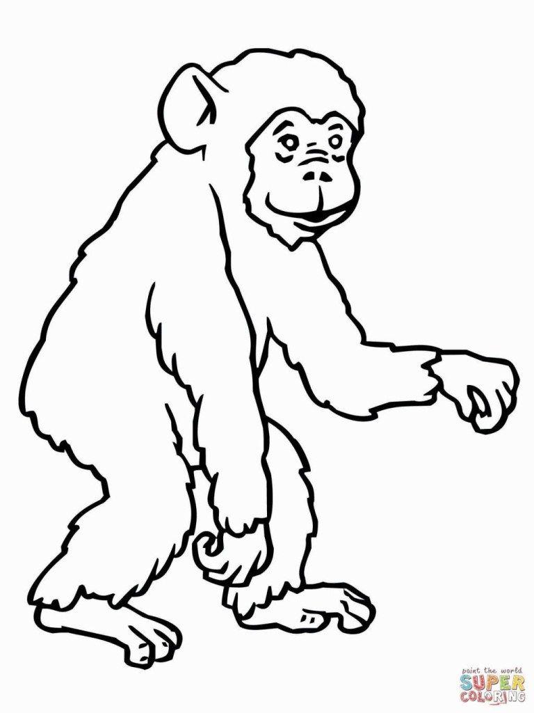 Malvorlagen Schimpansen