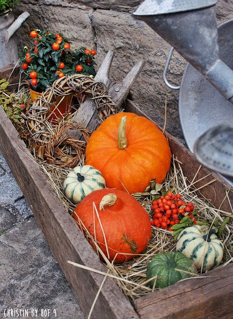 Photo of Courtyard 9: The wreath in September, pumpkins and lots of orange in the courtyard