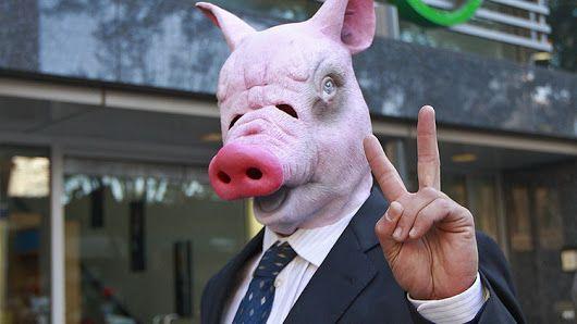 FOTOS: Científicos crean el primer híbrido entre humano y cerdo - RT