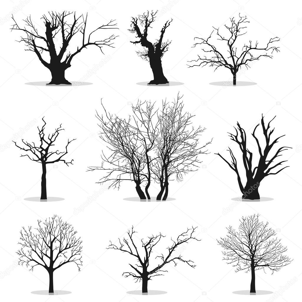 collection de silhouettes d 39 arbres illustration 9133729 dessin pinterest arbre. Black Bedroom Furniture Sets. Home Design Ideas