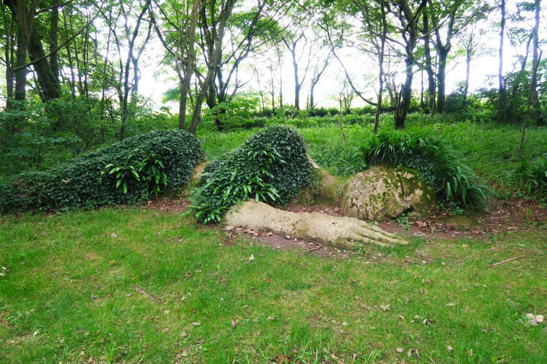 2d6c5e500ca52e83e5ea2f91fdb83869 - Lost Gardens Of Heligan To Eden Project