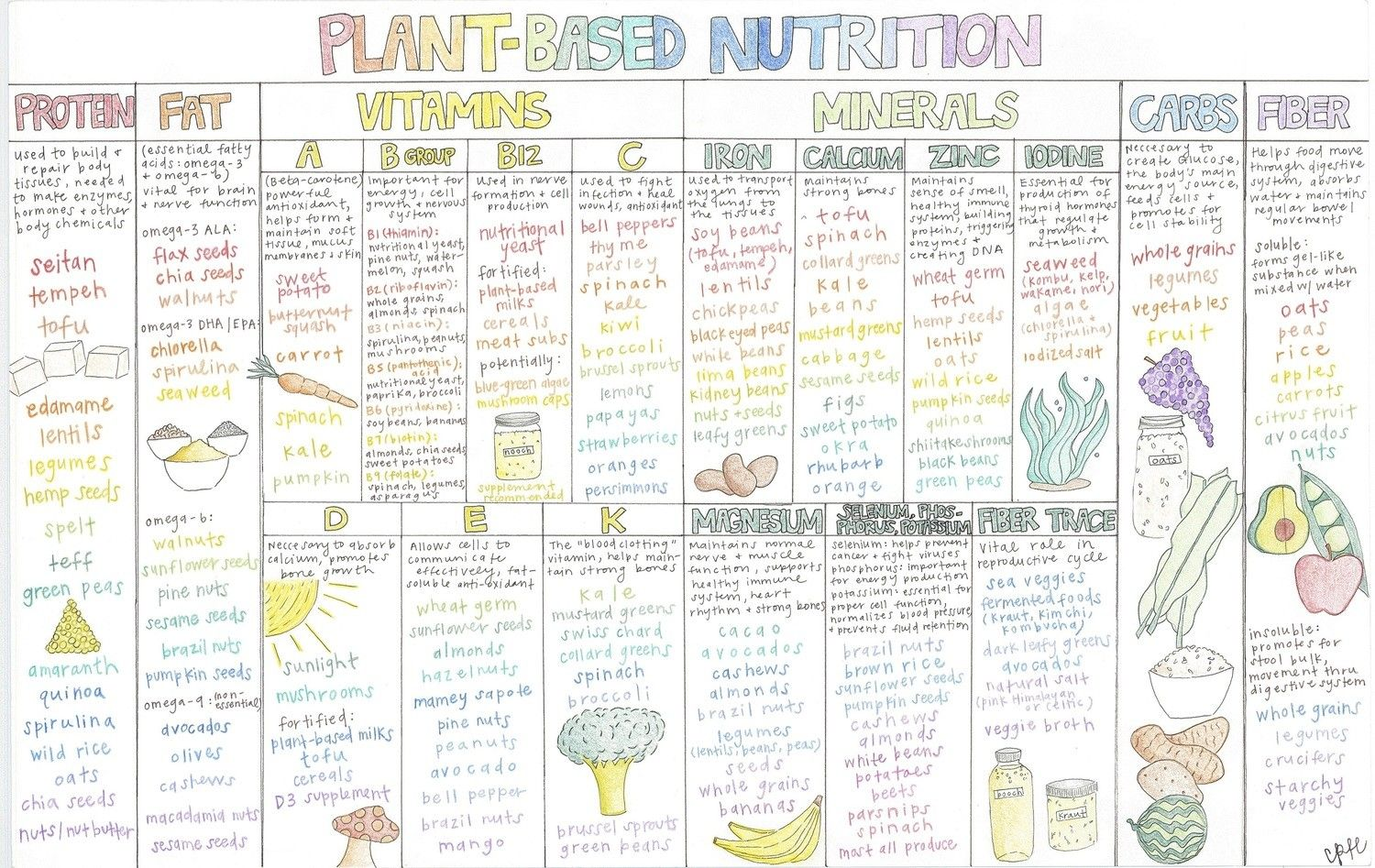 """Plant-based Nutrition Chart (12""""x18.5"""" poster) 