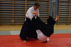 Aikidotraining in Linz mit Yunichi Yoshida, Oktober 2013 - Kokyonage