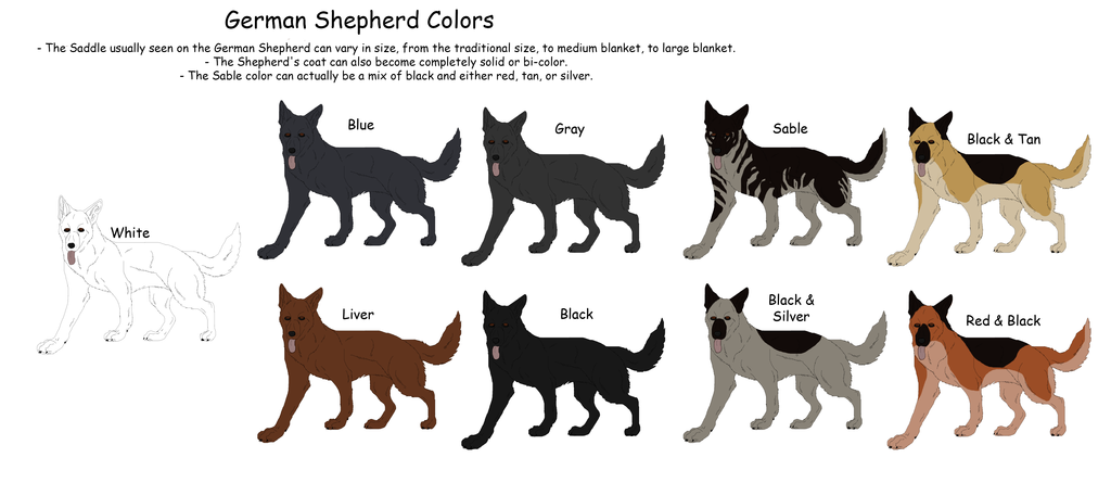 German Shepherd Colors By Black Tiger Of Evil On Deviantart German
