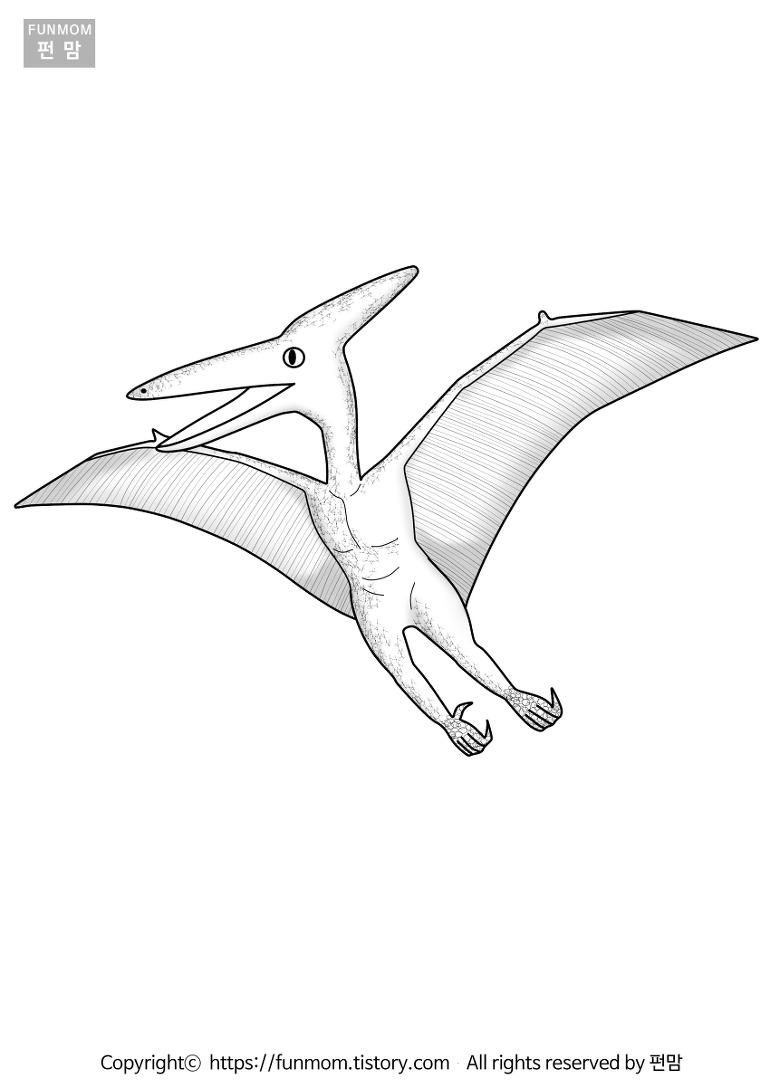 익룡 프테라노돈 색칠하기 프린트 숨은 그림 찾기, 공룡 색칠 공부, 가면만들기