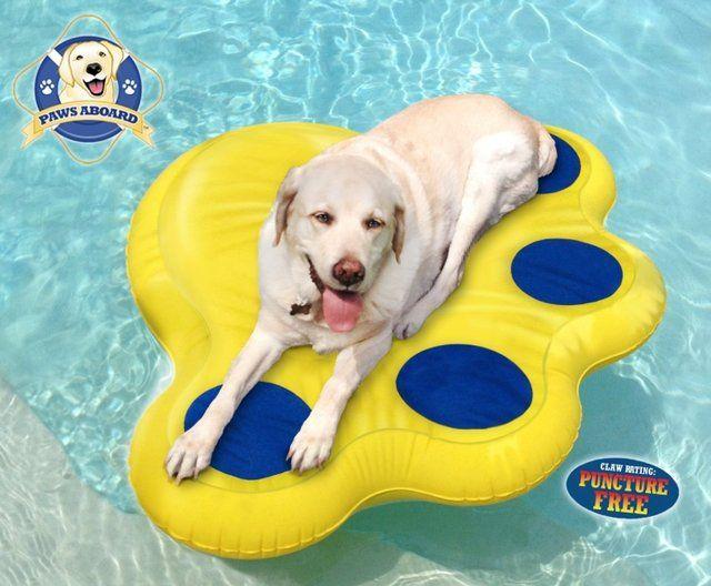 Dog Pool Float Dog Pool Floats Dog Pool Doggy