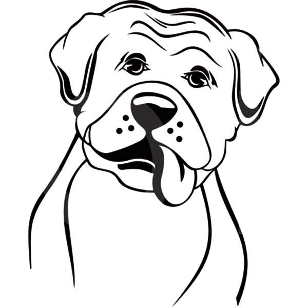 dog coloring sheet boxer - Google Search Decorating DIY project - best of coloring pages for adults dogs