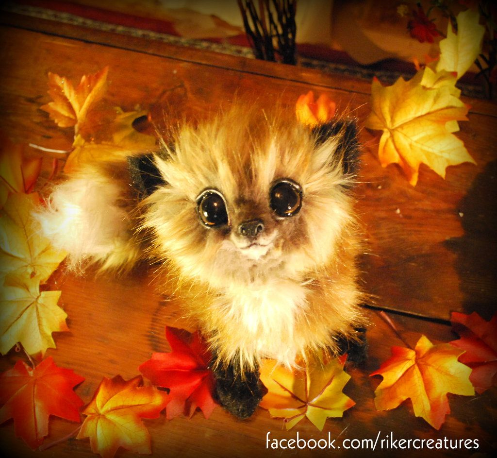 Baby inari fox for sale - Baby Red Fox Poseable Cuddly Creature By Heiditruth Deviantart Com On