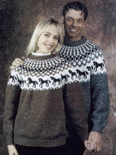5bdb2f1ea DIY kit horses sweater
