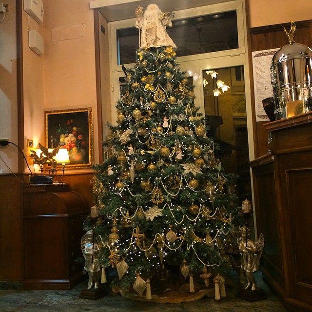 #lorelintheworld #buonnatale #merrychristmas #goldentree #angels