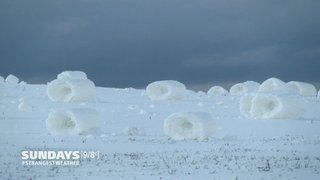 VIDEO: Snow Rollers!