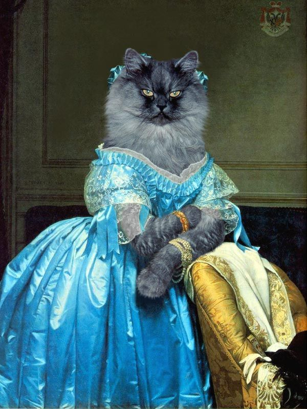 The Princesse De Broglie Ingres Animaux En Costumes Costume Chat Chats Et Chatons