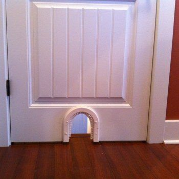Exceptional Cat Door Indoor Access Cat Door
