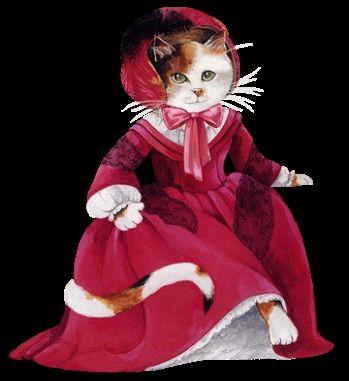 cat dresses for cats | jean paul gaultier is al modeontwerper sinds midden jaren a 70 en ...
