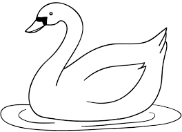 880 Gambar Kartun Hewan Bebek Terbaru