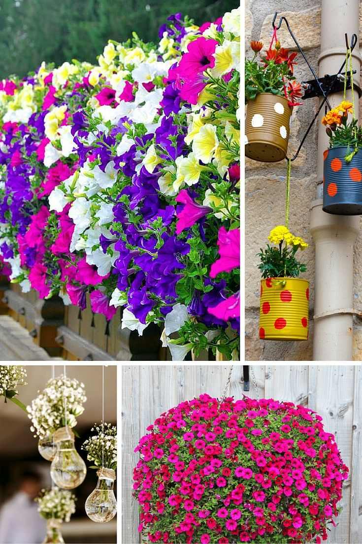 70 Hanging Flower Planter Ideas (PHOTOS and TOP 10) -