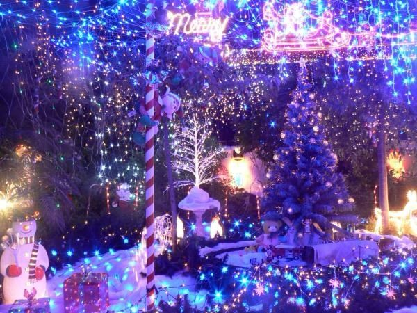 Kambah Queensland Austrailia Christmas Lights Christmas Aussie Christmas