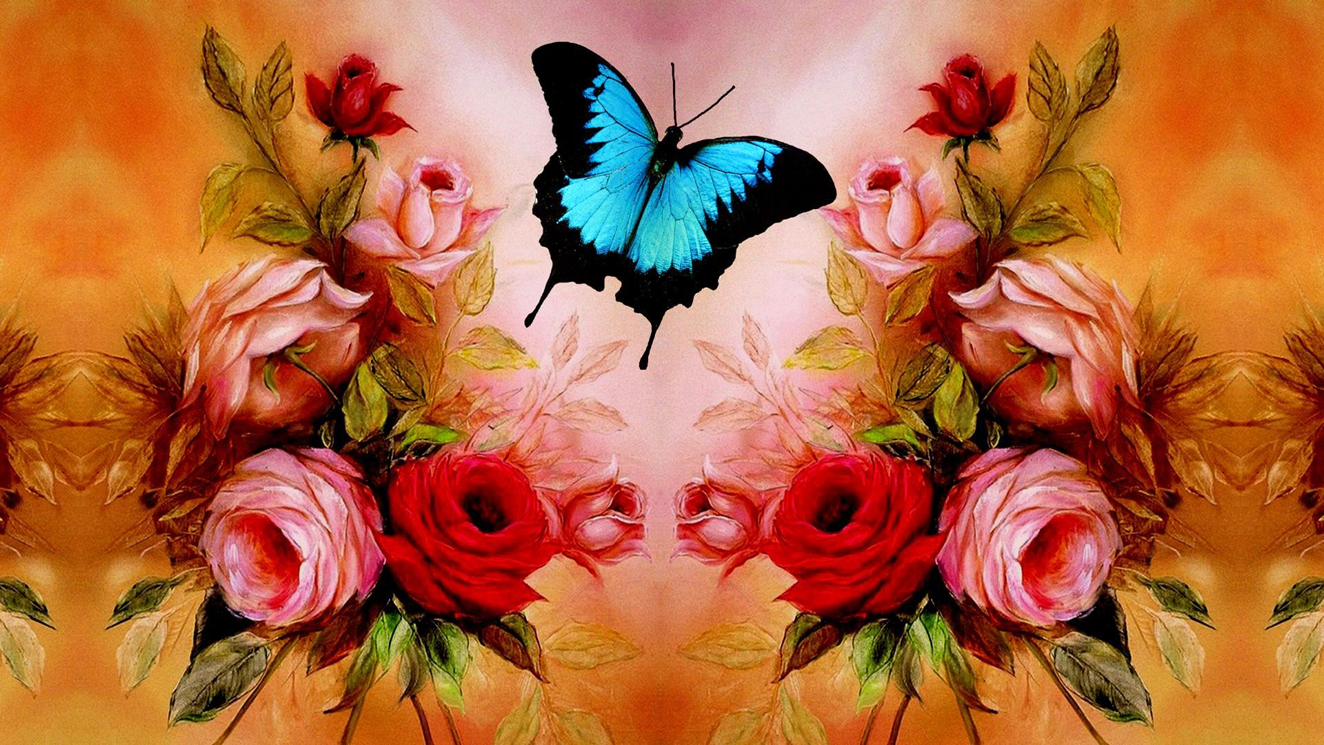 Valentine's day WallpaperButterfly Roses Wallpapers