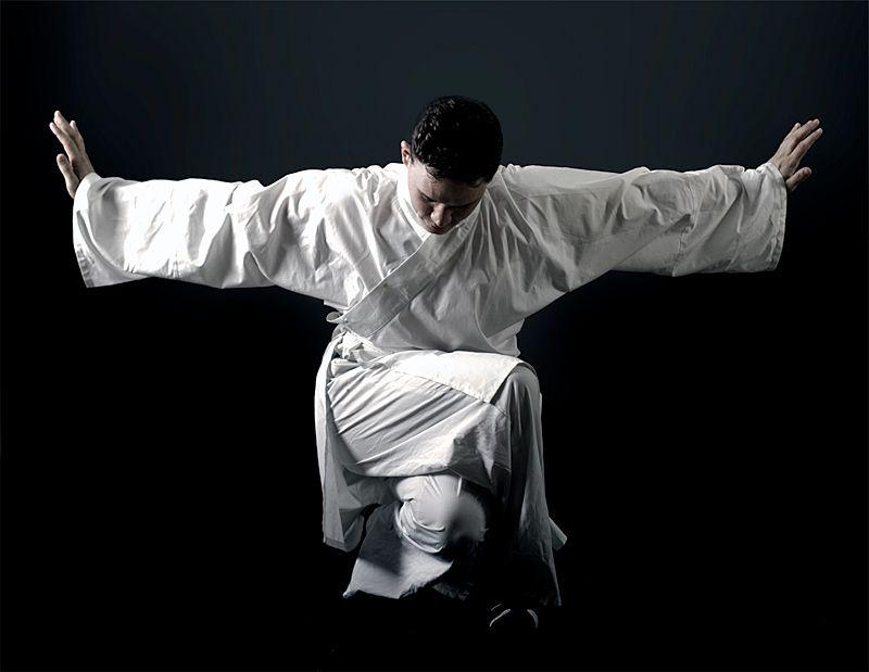 Crane Style Pose By Sceneshift On Deviantart Martial Arts Kung Fu Martial Arts Martial Arts Techniques