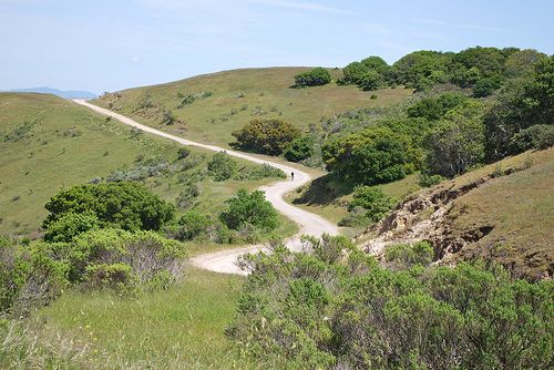 It could be that many visitors confuse it with the oceanside Fort Ord Dunes State Park. While Fort Ord Dunes State Park has its own magnificence, ...