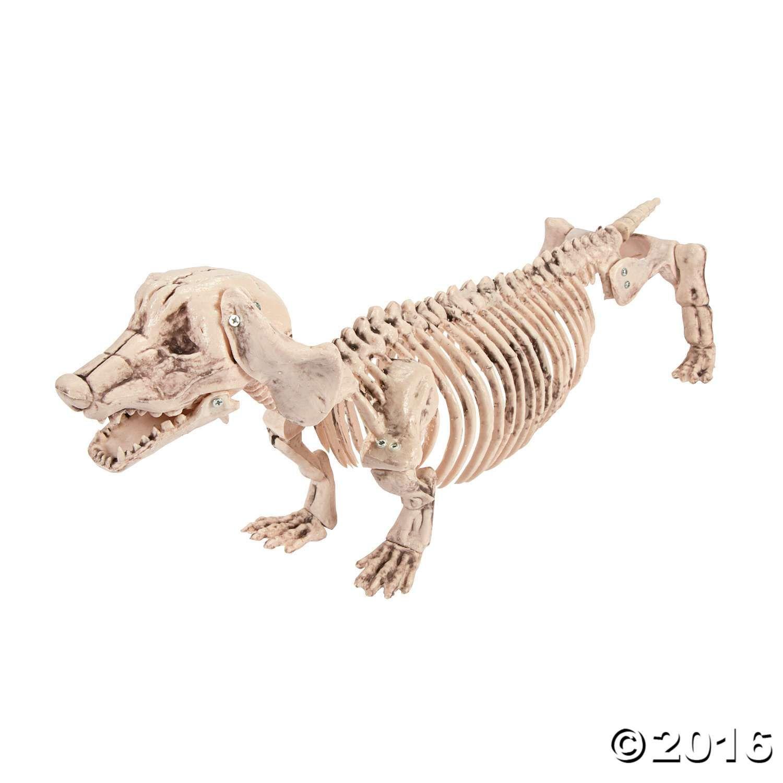 halloween dachshund skeleton