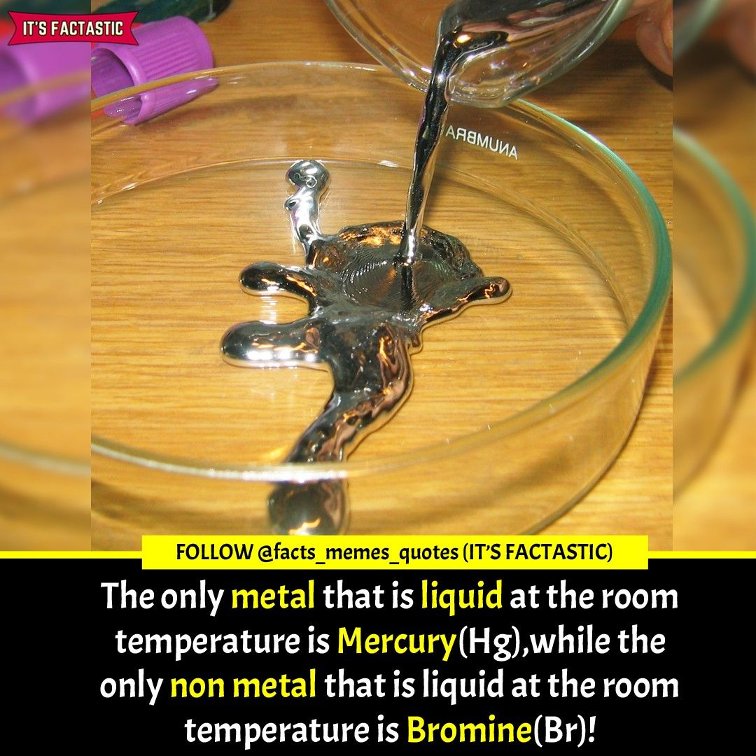 Chemistry Elements Facts That Everyone Should Know In 2020 Memes Quotes Mercury Facts