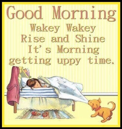 Good Morning Wake Up Morning Good Morning Morning Q Good