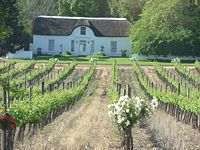 Cape Winelands travel guide - Wikitravel To learn more about #CapeTown | Cape Winelands, click here: http://www.greatwinecapitals.com/capitals/cape-town-cape-winelands