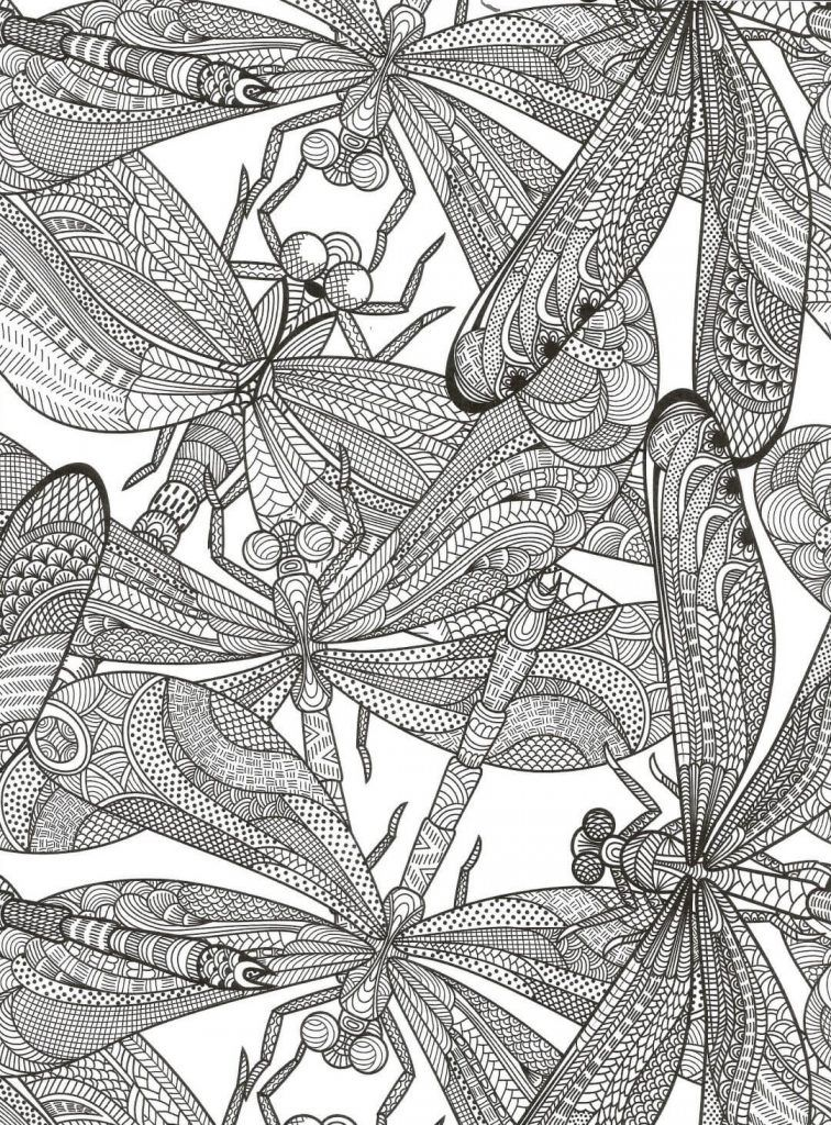 Dragonfly Coloring Pages With Images Coloring Pages Free