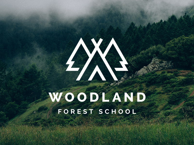 woodland forest school logo 品牌vi设计 brand vi design pinterest