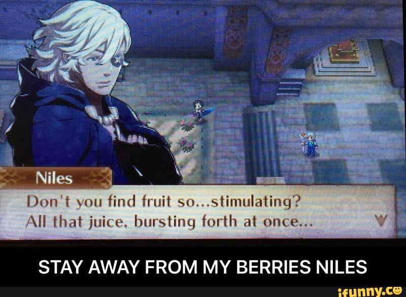 STAY AWAY FROM MY BERRIES NILES