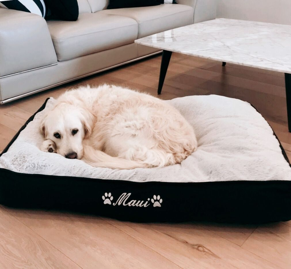 Personalised Doggy Day Beds For Larger Dog Breed Personalized Dog Beds Dog Person Large Dog Breeds