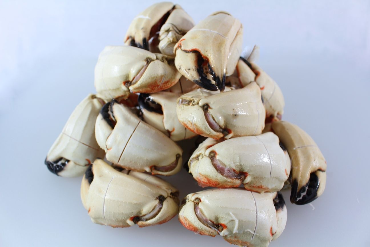 Jonah Crab Claws from Massachusetts! Cooked and scored