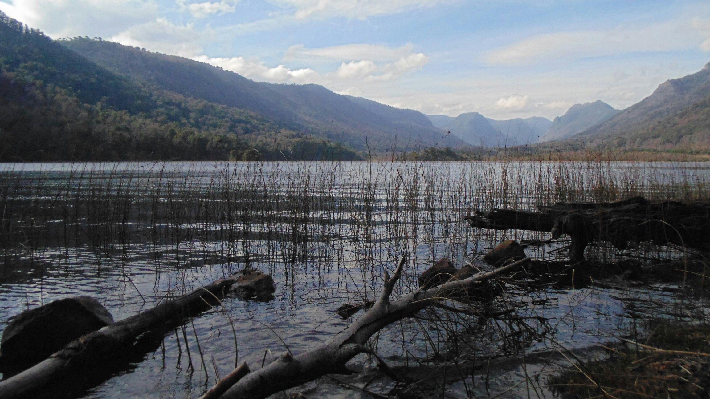 Laguna Malleco, Parque Reserva Nacional Tolhuaca.