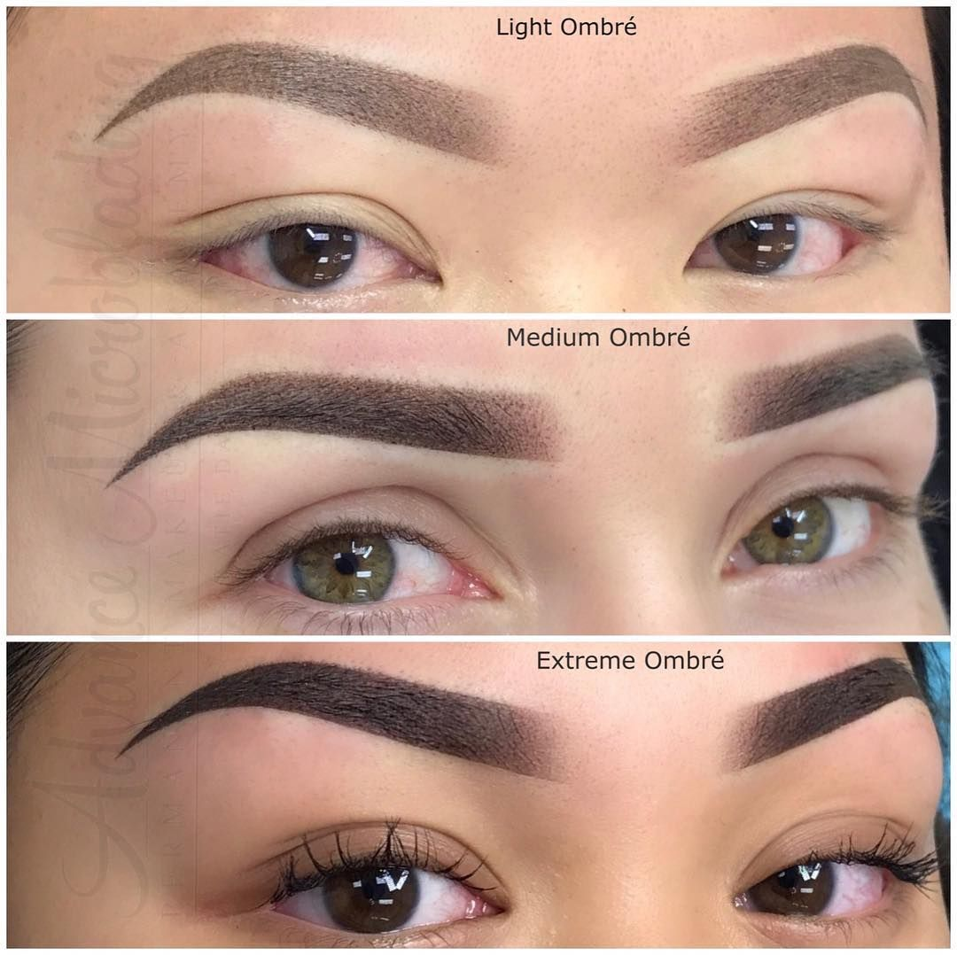 Pin by Jennifer Cocco on Powder brows Brows, Powdered