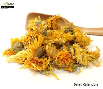 Calendula Dried Flowers 干燥金盞花 Cypress essential oil
